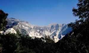 Apuane da Carrara